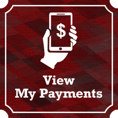 ViewMyPaymentsIcon